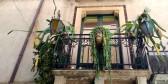Taormina - balkony i doniczki