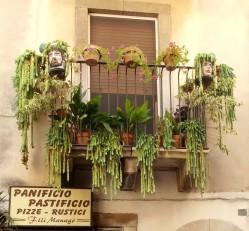 Taormina-Spójrz w górę na balkon